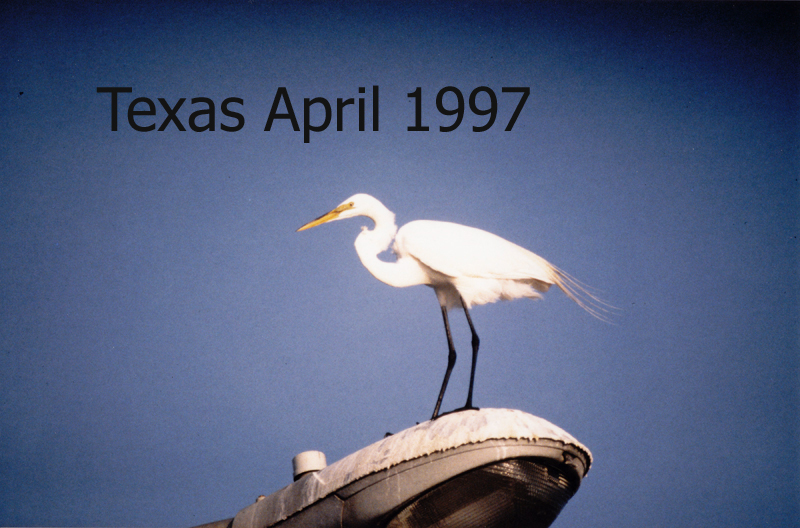 tl_files/Texas April 1997/Texas April.jpg